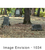 #1034 Photography of Gravestones in a Cemetery by Kenny Adams