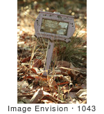 #1043 Photography of a Pink Grave Tag by Kenny Adams