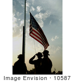#10587 Picture Of Soldiers Saluting The American Flag