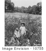 #10755 Picture Of A Child And A Collie Dog In A Field