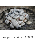 #10899 Picture Of Ash Coated Charcoal On A Grill