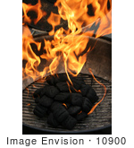 #10900 Picture Of Burning Charcoal Briquettes