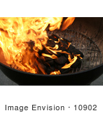 #10902 Picture of Burning Charcoal on a Grill by Jamie Voetsch