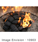 #10903 Picture Of Charcoal Briquettes Combusting Into Flames