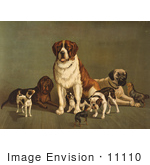 #11110 Stock Illustration Of A Group Of Dogs; St Bernard Hound Mastiff Bulldog Jack Russell Terrier A King Charles Spaniel And Two Other Little Dogs At The New England Kennel Club'S Dog Show