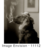 #11112 Picture of a Dog Smoking a Cigarette and Being Humanlike by JVPD