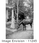 #11245 Picture Of Helen Keller With A Horse In 1907