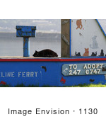 #1130 Picture of a Stray Black Cat Beside an Adoption Sign by Kenny Adams