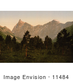 #11484 Picture Of Mountains And Forest Norway