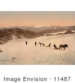 #11487 Picture Of People And Horses On Folgefond Glacier