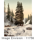 #11756 Picture Of A Horse Drawn Sleigh In Snow Switzerland