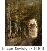 #11918 Picture Of A Road Leading To Tell'S Chapel Switzerland