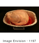 #1197 Thawed And Fresh Thanksgiving Photography