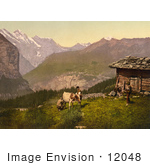 #12048 Picture Of Farmers Milking A Cow In Switzerland