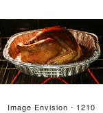 #1210 Photography Of A Thanksgiving Turkey Roasting In A Oven