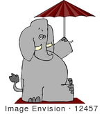 #12457 Elephant On A Beach Towel Holding Umbrella Clipart