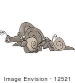 #12521 Group Of Snails Clipart