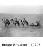 #12726 Picture Of Camels Pulling A Carriage