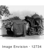 #12734 Picture Of Cows Pulling A Royal Carriage