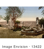 #13422 Picture Of Fountain In The Garden At Carthage Tunisia In 1899