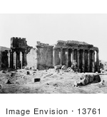 #13761 Picture Of Columns Along The Temple Of Jupiter Baalbek