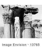 #13765 Picture Of Columns And Carved Ceiling At The Temple Of The Sun Baalbek
