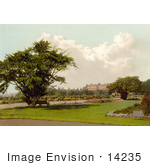 #14235 Picture Of Park At Hampton Court Palace London England