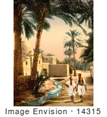 #14315 Picture Of People Walking Along A Stream Biskra Algeria