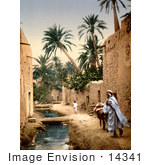 #14341 Picture Of A Man Mule And Boy In Biskra Algeria