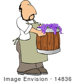 #14836 Grape Farmer Carrying A Barrel Of Purple Grapes Clipart