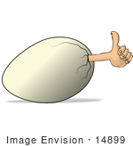#14899 Human Hand Sticking Out Of An Egg Giving The Thumbs Up Clipart