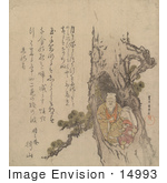 #14993 Photo Of A Tagasago Couple In A Pine Tree Hollow