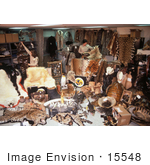 #15548 Picture Of Hundreds Of Confiscated Wildlife Products