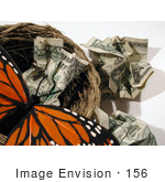 #156 Image of a Butterfly in a Nest With Crumpled Cash by Jamie Voetsch