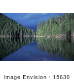 #15630 Picture Of A Blue Sky And Evergreen Forest Reflecting In A Lake