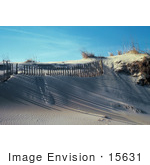 #15631 Picture Of Shadows Cast On Sand Dunes From A Fence On A Beach