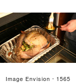 #1565 Person Buttering A Turkey With A Brush