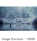 #15659 Picture Of A Frosty Morning With A Birdhouse Reflecting In A Body Of Water