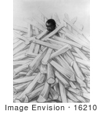 #16210 Picture Of An African American Child In A Wood Pile