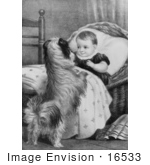 #16533 Picture Of A Dog And Baby