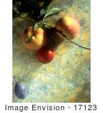 #17123 Picture Of A Peach Nectarine Cherry Tomato And A Plum On A Marble Background