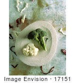 #17151 Picture Of Cauliflower And Broccoli On A Plate With Shreds Of Cabbage