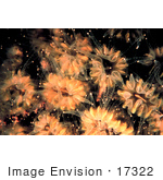 #17322 Picture Of Peach Colored Flower Corals (Eusmilia Fastigiata)