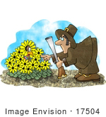 #17504 Pilgrim Man Hunting For A Turkey That Is Hiding In Daisies Clipart