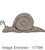#17708 Spiral Patterned Shell Snail Clipart