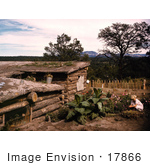 #17866 Photo Of A Child In A Garden By A Dugout Home In Pie Town New Mexico