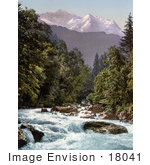 #18041 Picture Of Lutschine River Running Through An Evergreen Forest Jungfrau Mountain Switzerland