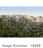 #18399 Photo Of A Garden In The City Of Jaffa Holy Land Israel