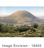 #18402 Photo Of Mount Tabor Har Tavor Itabyrium Jebel Et-Tur And The Mount Of Transfiguration Holy Land Israel