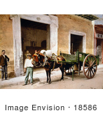 #18586 Photo Of A Man Leading A Mule That Is Pulling A Cart In Havana Cuba